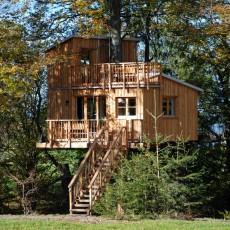 Baumhaushotel im Allgäu – Ein Bauernhof-Erlebnis für Kinder und Eltern!