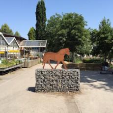 Ein Besuch auf dem Sonnenhof in Stuttgart-Mühlhausen
