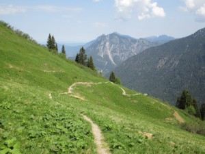 Weg zum Alpkopfgipfel