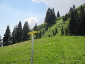 Wegweiser zur Alpspitze