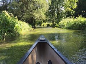 Blick aus dem Kanu