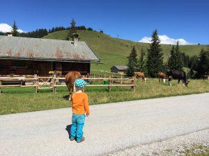 Loferer Alm_Wandern mit Kindern