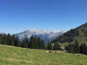 Loferer Am_Blick in die Bergwelt