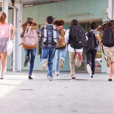 Schulrucksack Vergleich – Worauf beim Kauf achten?