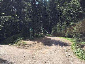 Blomberg zum Zwieselberg_Wanderweg