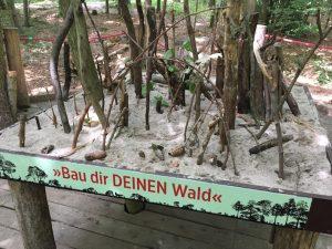 Haus des Waldes _Station 4 Walderlebnisweg