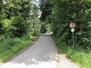 Tobelweg zur Gaisalpe_Beim Wanderparkplatz