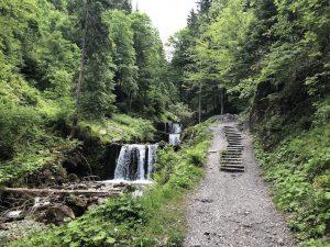 Tobelweg zur Gaisalpe_Erste Stufen