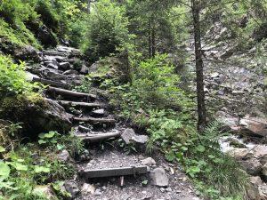 Tobelweg zur Gaisalpe _Treppen im oberen Bereich