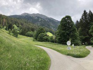 Tobelweg zur Gaisalpe _Weg zur Alpe