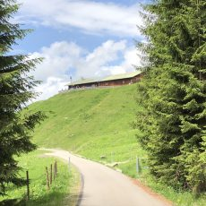 Kinderwagen-taugliche Wanderung zur Mittelalpe bei Grasgehren
