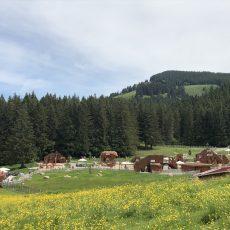 Alpsee Bergwelt – Freizeit-Spass mit Abenteuer-Alpe und Rollercoaster