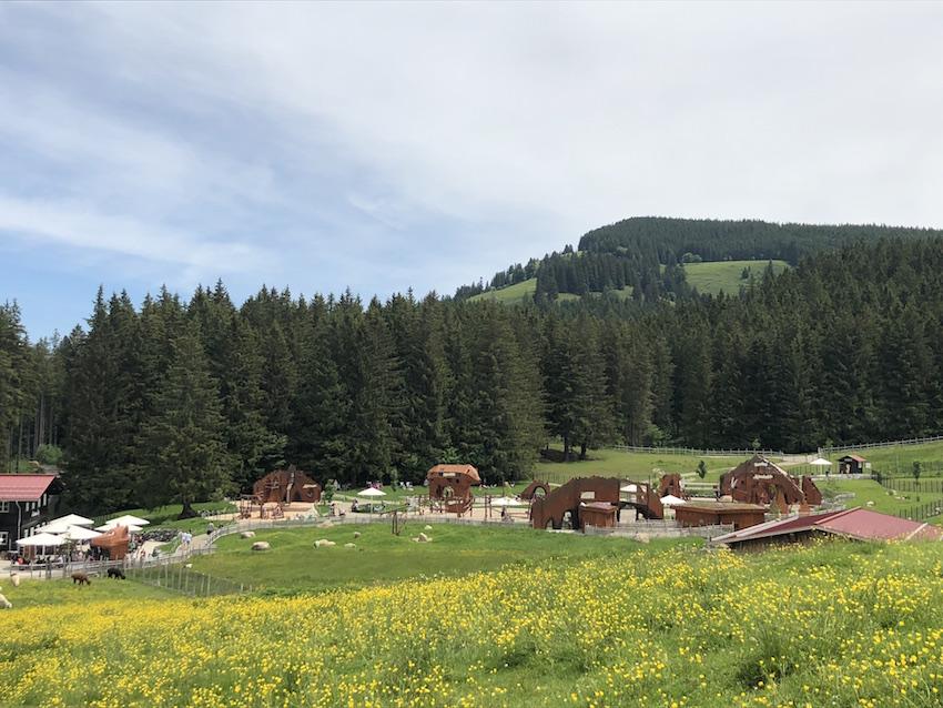 Alpsee Bergwelt_Abenteuer-Alpe