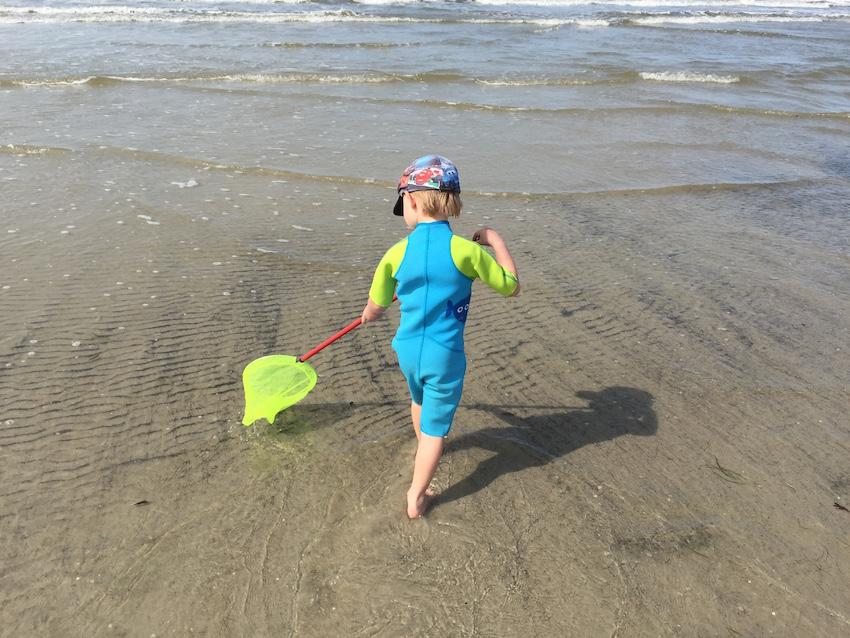 Strandurlaub mit Kindern_Krebse fangen