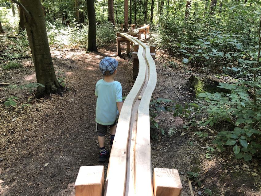 Herzogliche Kugelbahn_Im Wald