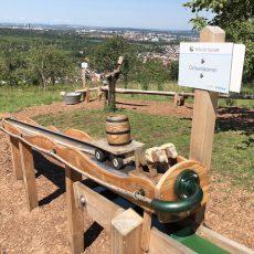 Herzogliche Kugelbahn in Stetten – Murmel-Spass für die ganze Familie!